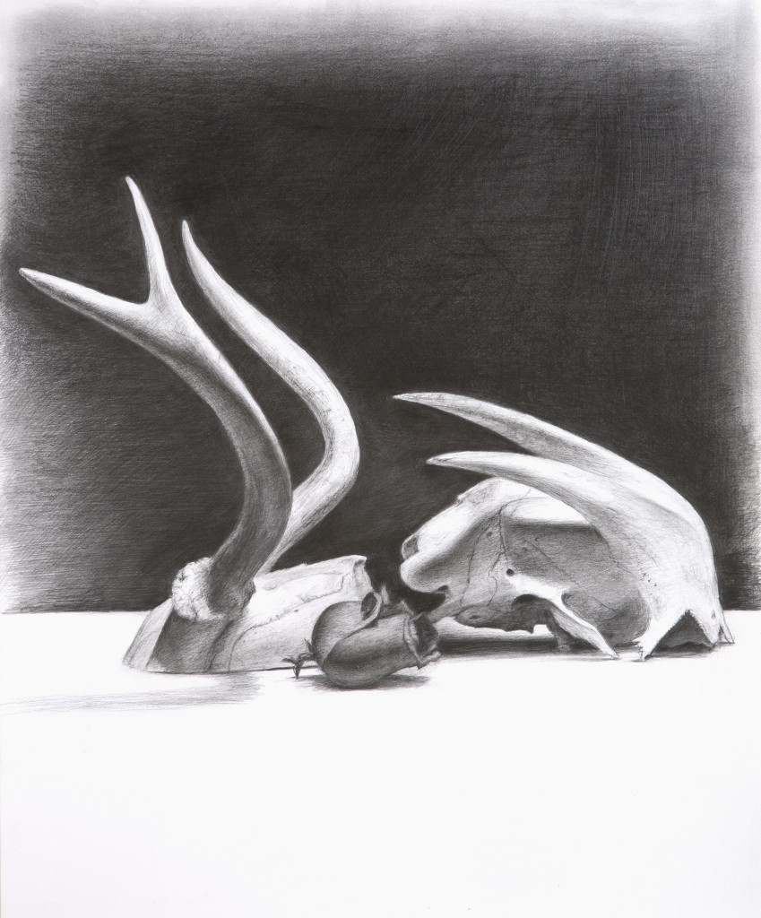 Still Life X | 17 x 14 inches | graphite on paper